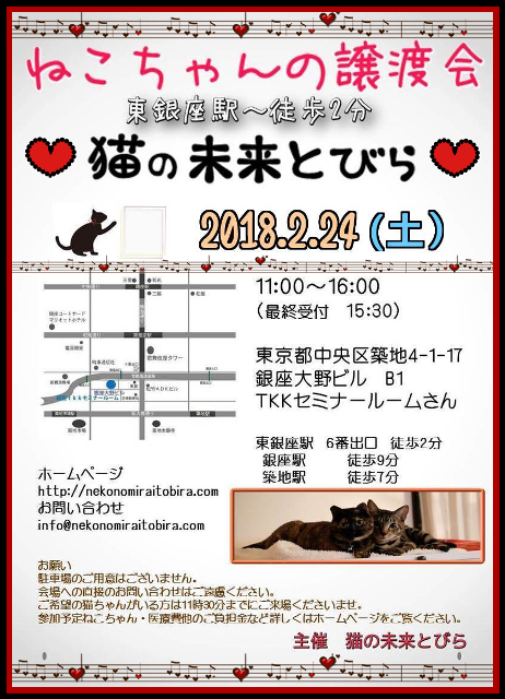 【 第4回】 <br>東京東銀座にて ねこの譲渡会開催
