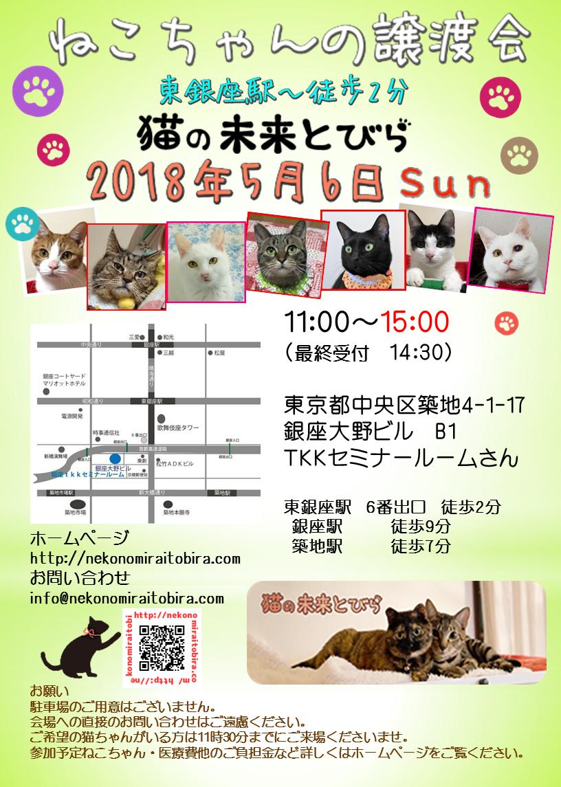 【 第8回】 <br>東京東銀座にて ねこの譲渡会開催