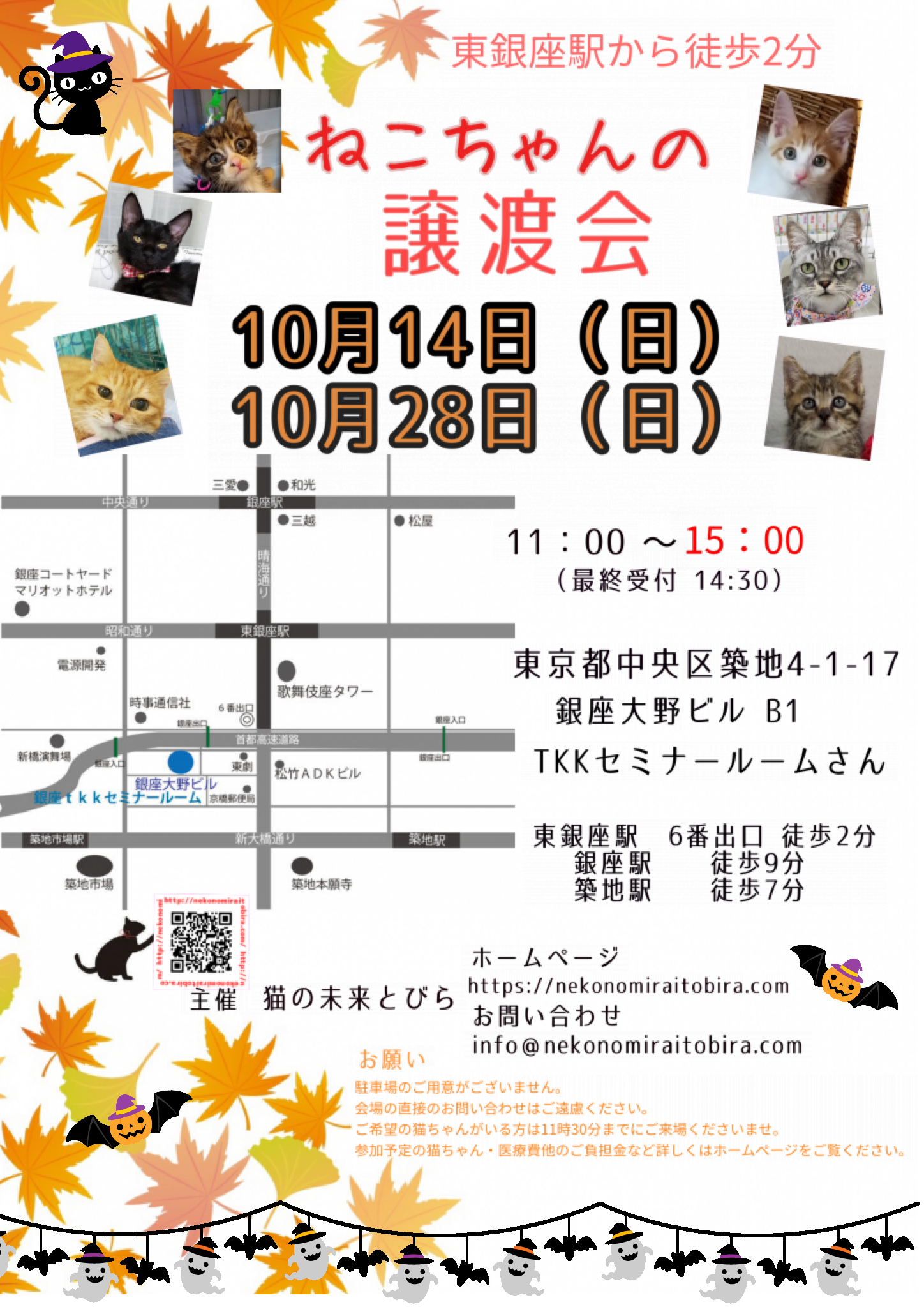 【 第20回】 <br>東京東銀座にて ねこの譲渡会開催