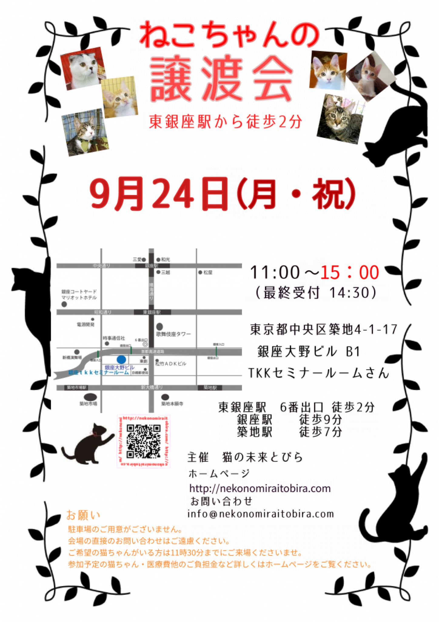 【 第18回】 <br>東京東銀座にて ねこの譲渡会開催