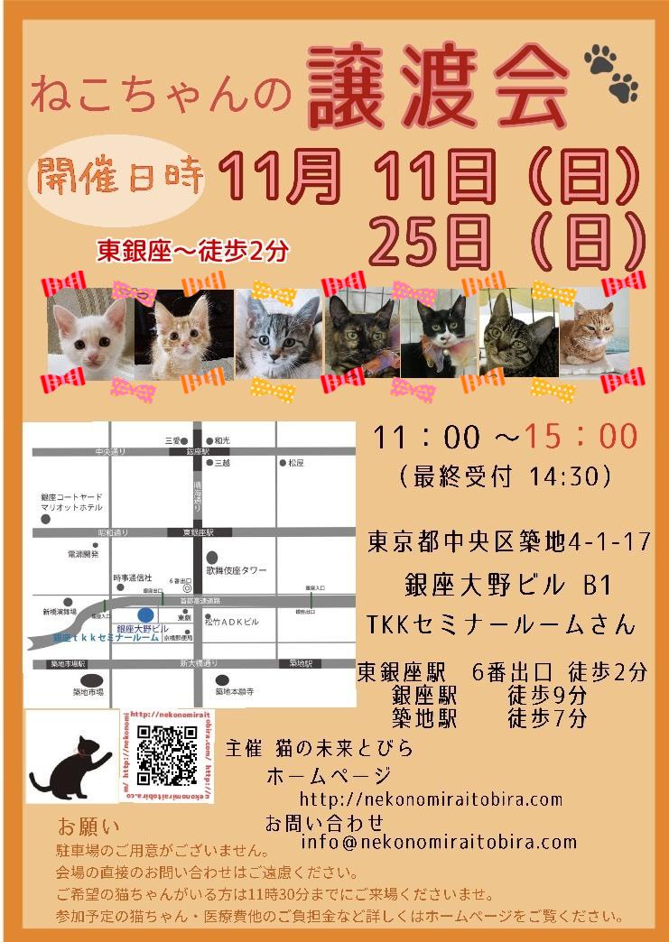 【 第22回】 <br>東京東銀座にて ねこの譲渡会開催