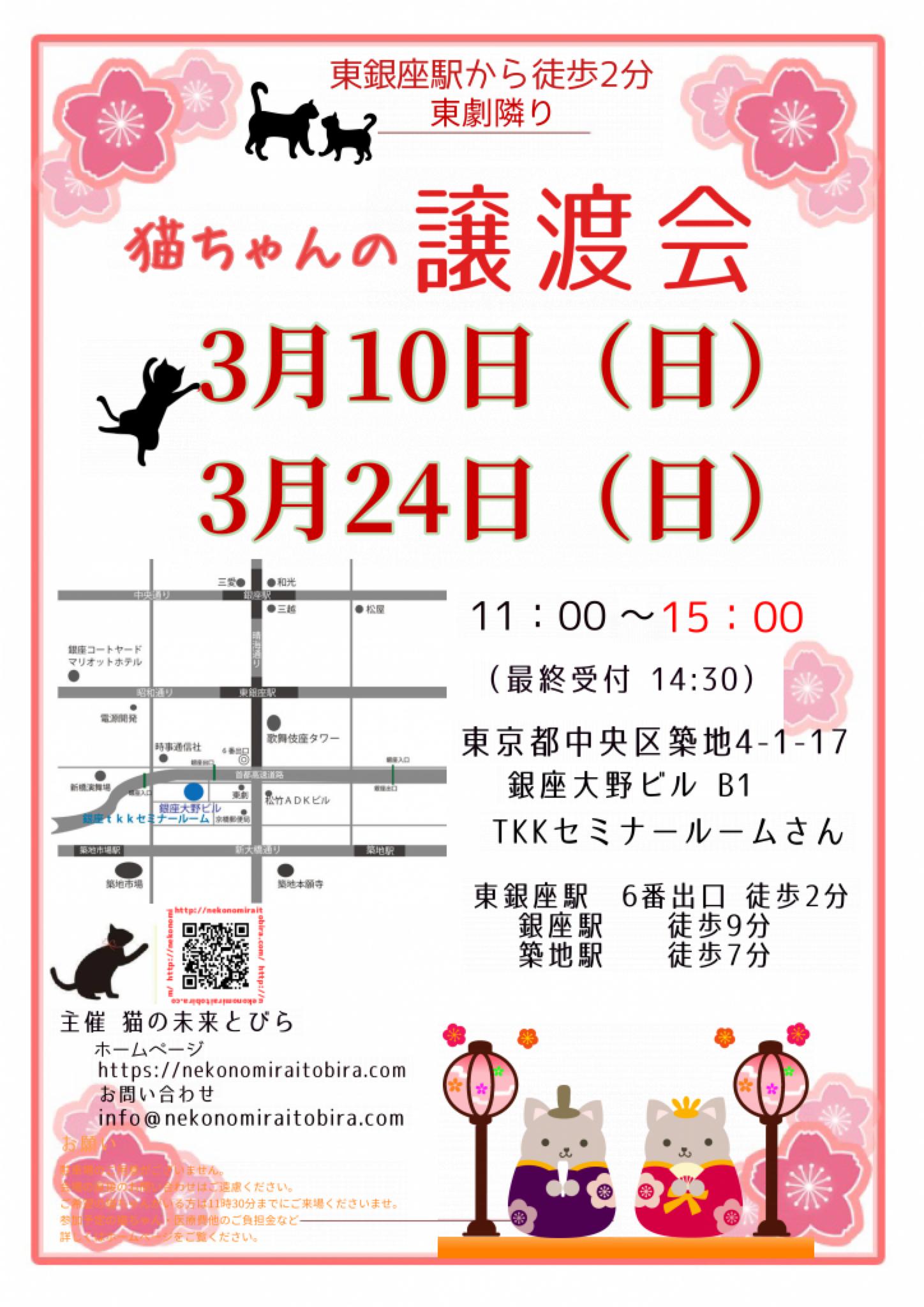 【 第30回】 <br>東京東銀座にて ねこの譲渡会開催