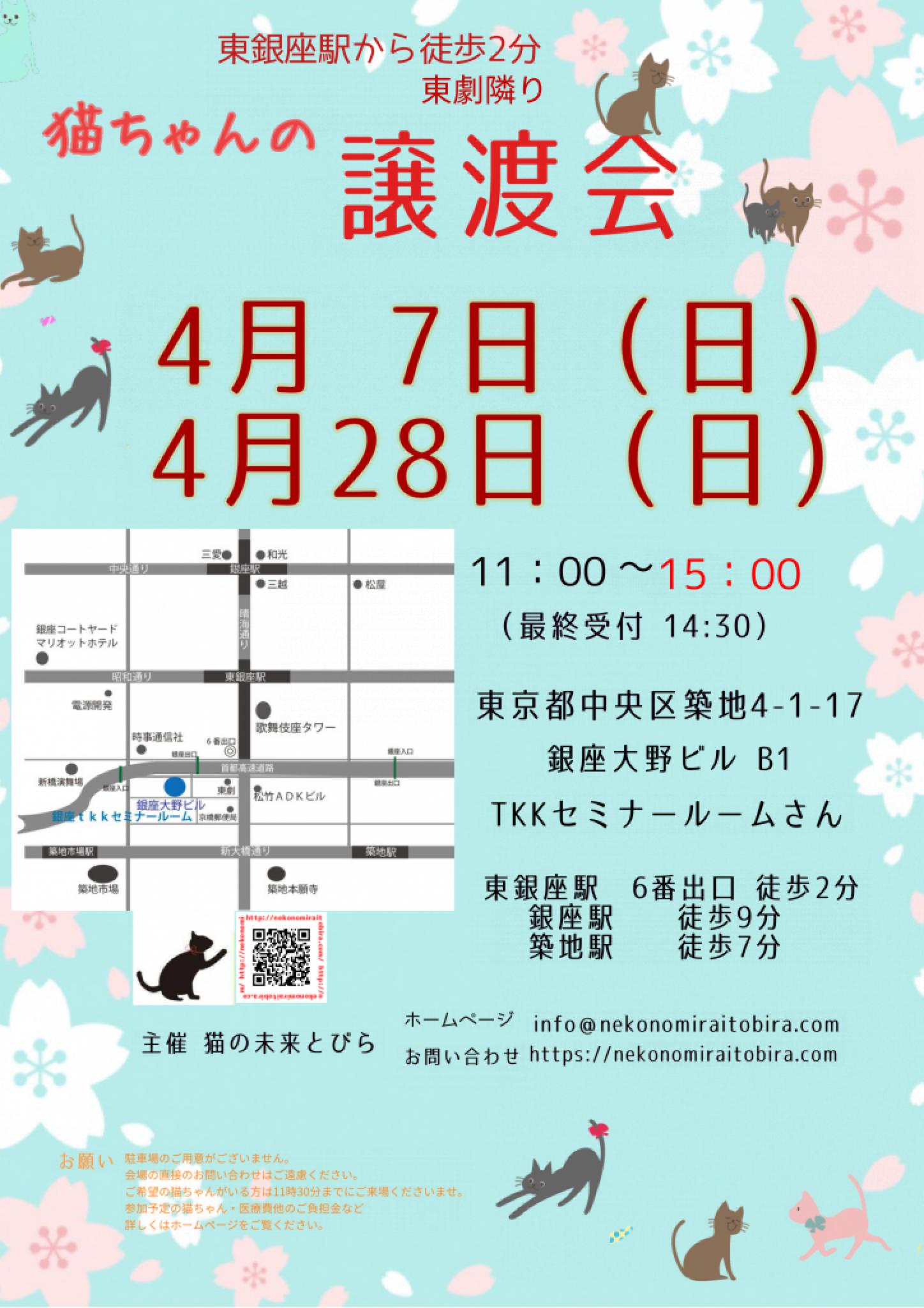 【 第32回】 <br>東京東銀座にて ねこの譲渡会開催