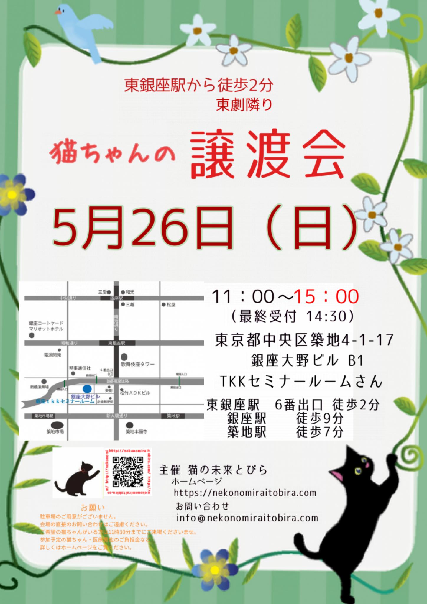 【 第33回】 <br>東京東銀座にて ねこの譲渡会開催
