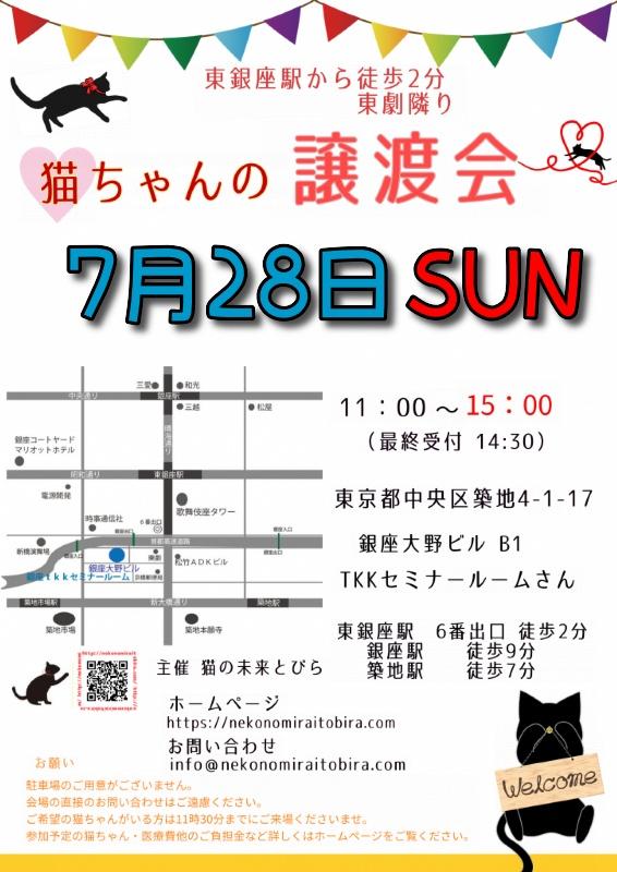【 第37回】 <br>東京東銀座にて ねこの譲渡会開催